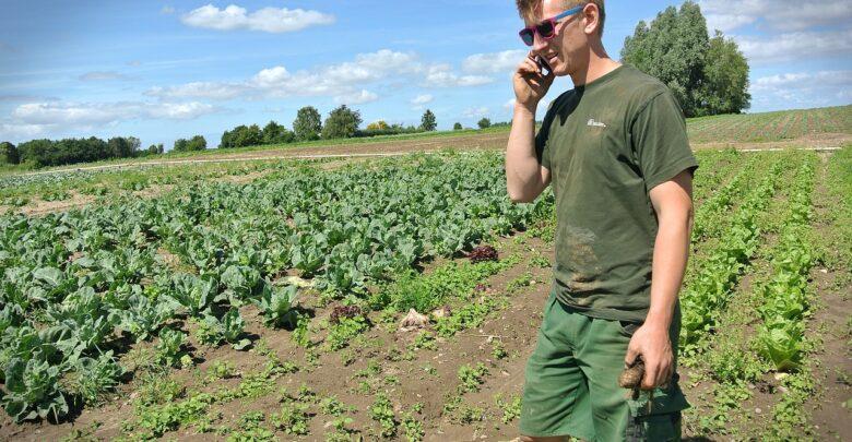 newsy rolnicze