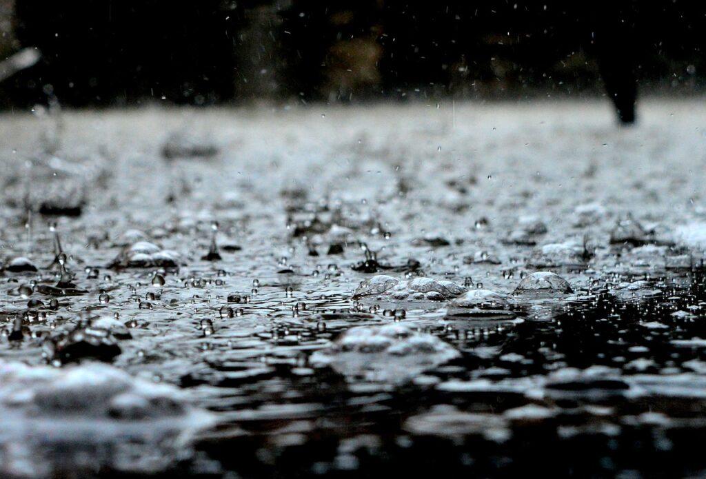 Satelitarny monitoring suszy w Polsce