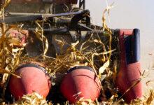 Rolnicy nie rezygnują z Bizonów
